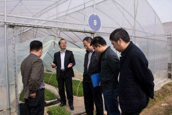 农业部品种更新换代调研组考察湘研种业科研基地