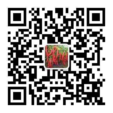 砀山县同乐辣椒研究所