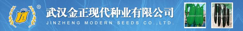 河南金蕾种苗有限公司