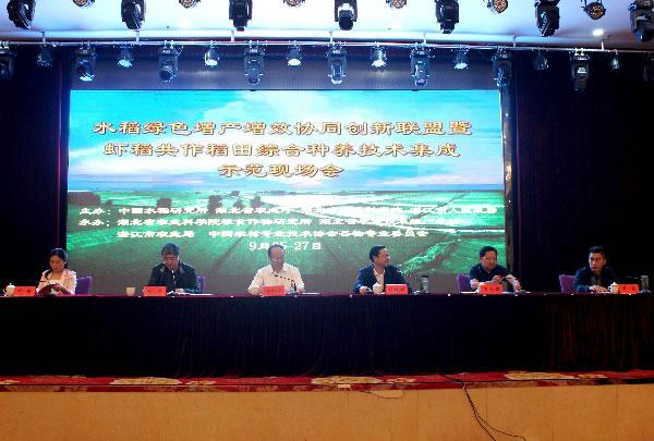 国家水稻绿色增产增效