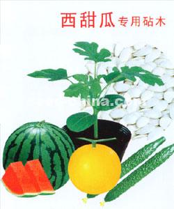 西甜瓜专用砧木