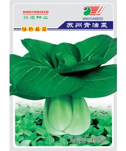 苏州青--小白菜
