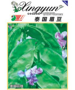 泰国眉豆--扁豆