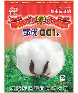 杂交抗虫棉-鄂优001