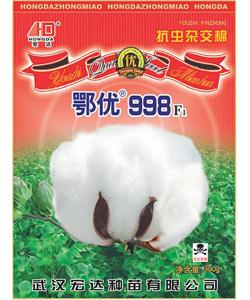 鄂优998抗虫杂交棉