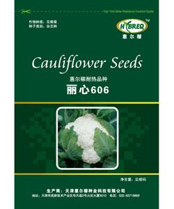 丽心606  花菜新品种