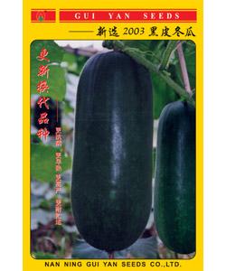 新选2003黑皮冬瓜