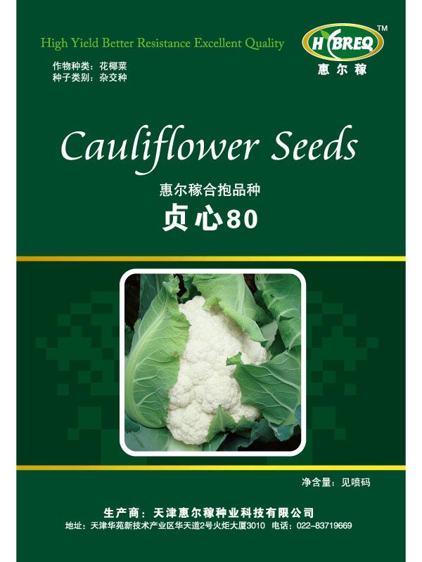 贞心80 花菜种子 花菜新品种