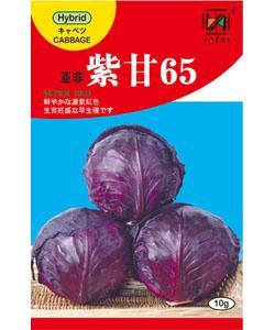 亚非紫甘65