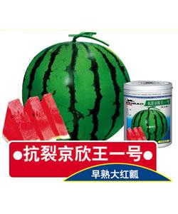 太阳诚集团www55519fcom
