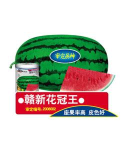 申博太阳城sunbet.com