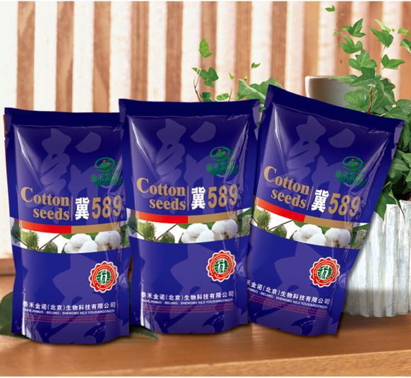 供应棉花种子 冀589(抗病高产系) 棉花种子厂家