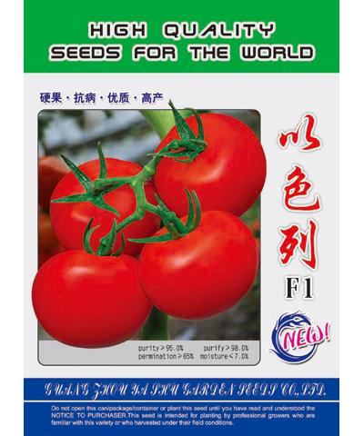 以色列R-204番茄