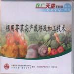 根用芥菜高产栽培及加工技术(一片装)