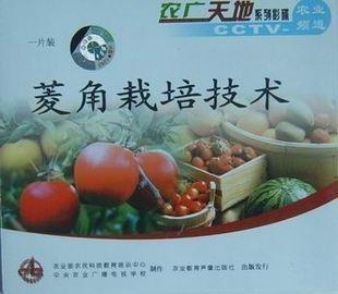 菱角栽培技术(一片装)