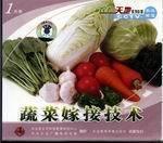 蔬菜嫁接技术(一