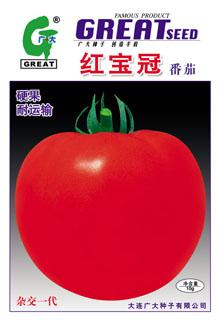 红宝冠-红果番茄