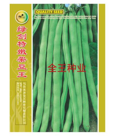 绿剑特嫩架豆王