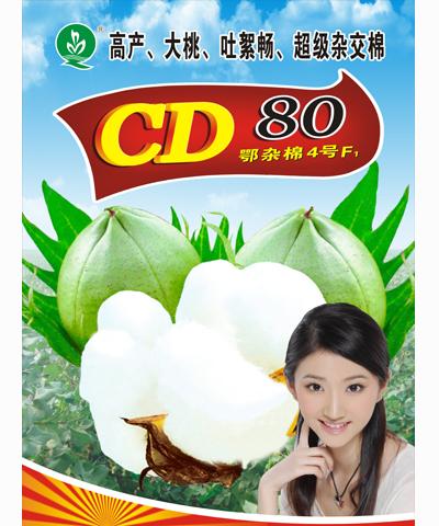 CD80F1棉花