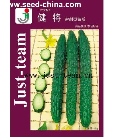健将-黄瓜
