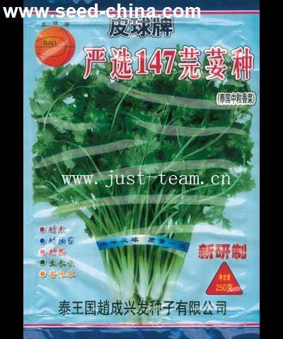 泰国严选147-香菜