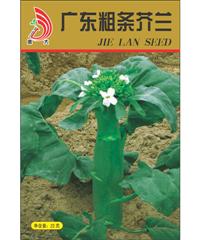 广东粗条芥兰20g