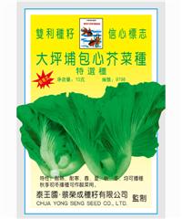 泰国大坪埔包心芥(两棵菜)10g