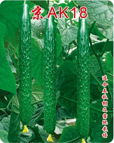 京AK18油量高产