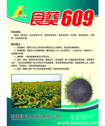 食葵609