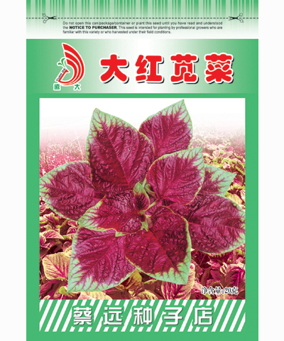 大红苋菜10g