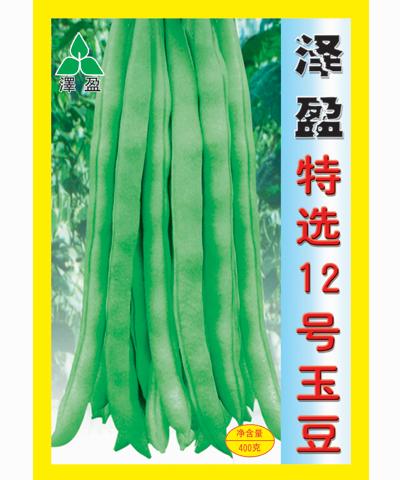 泽盈特选12号玉豆400g