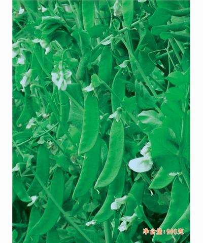 珍翠软荚荷兰豆(368)900g