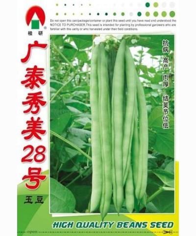 廣泰秀美28號玉豆