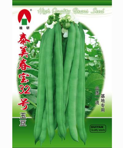 泰美春宝32号玉豆