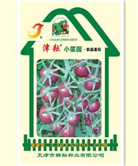 小菜园紫晶番茄
