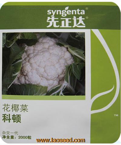 科顿花椰菜
