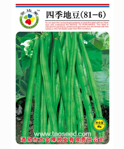 四季地豆(81-6)