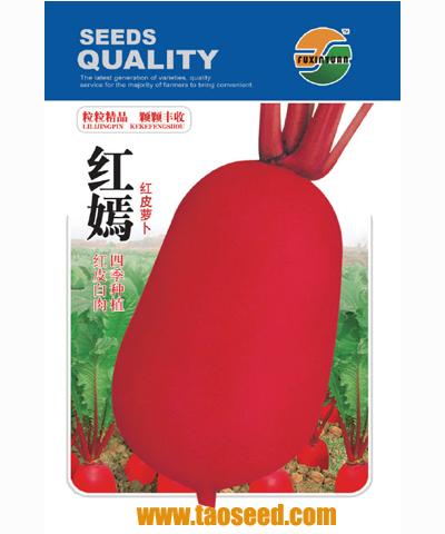 红嫣红皮萝卜