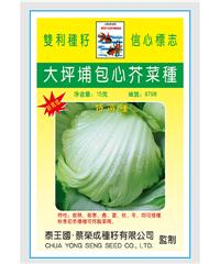 泰国大坪埔包心芥(一棵菜)10g