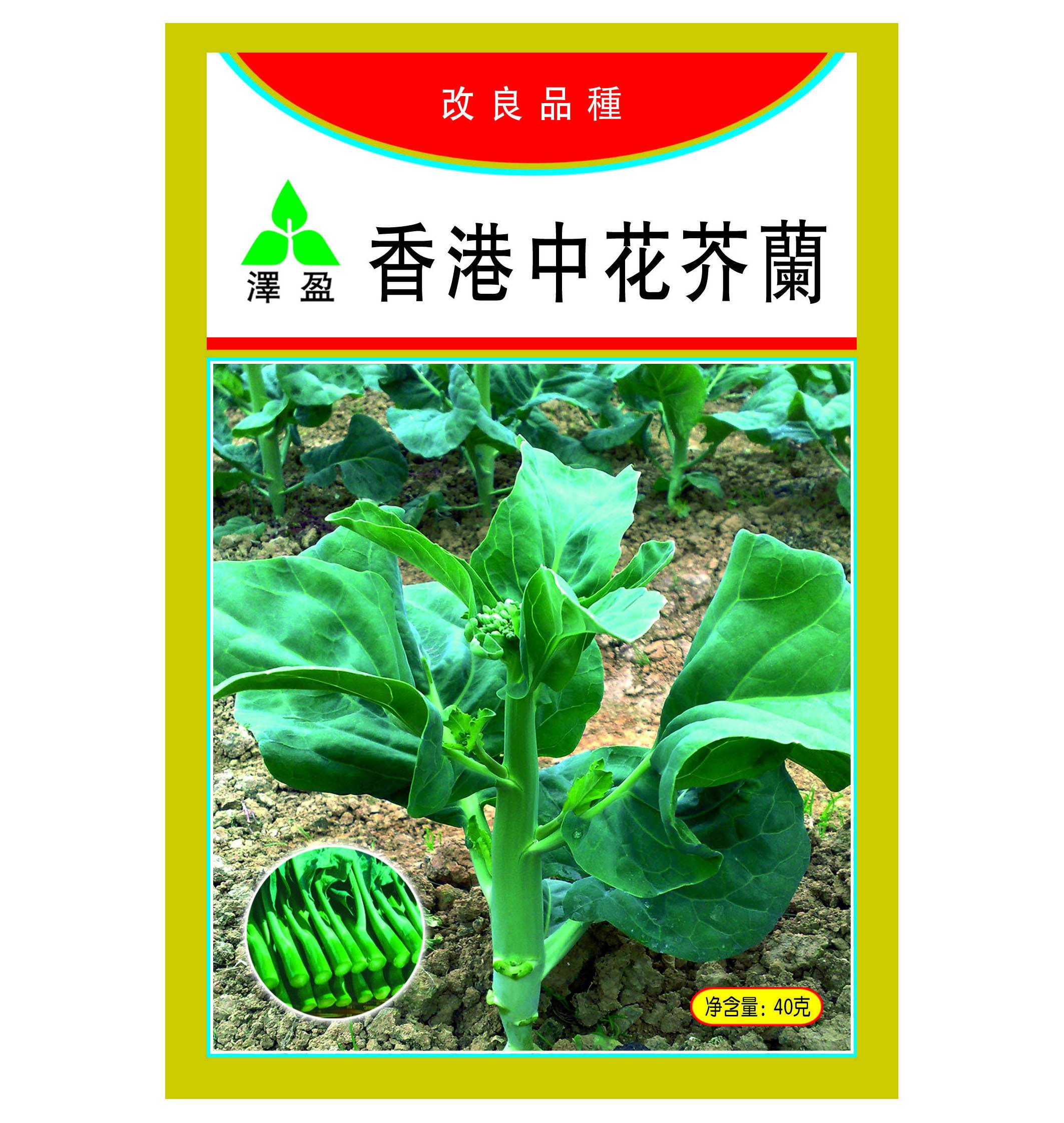 香港中花芥兰40g