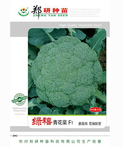 绿禧青花菜
