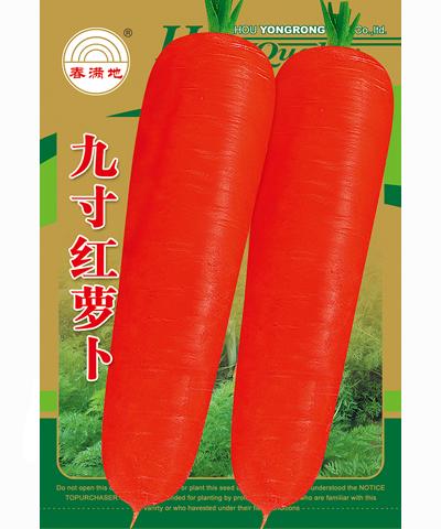 九寸红萝卜