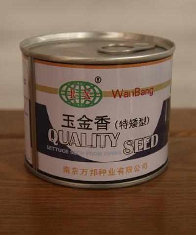 玉金香乌塌菜(特矮型)