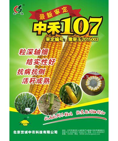 中禾107