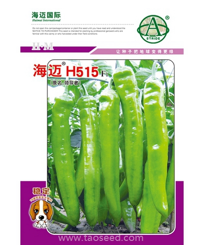 海迈H515羊角椒【视频】