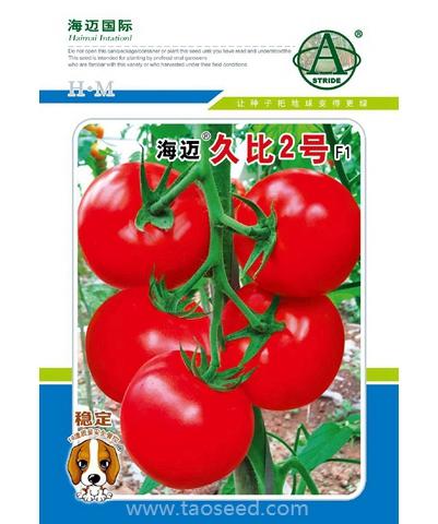海迈久比2号大红果番茄
