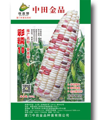 彩糯10(夏美糯1号)200克/包
