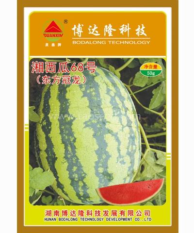 湘西瓜68号(东方冠龙)