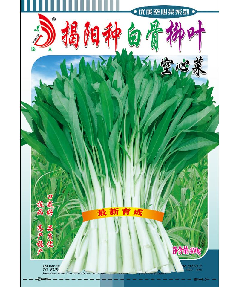 揭阳种白骨柳叶空心菜450g