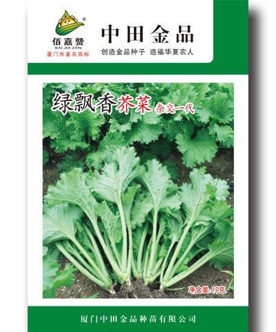 绿飘香芥菜 20g/包